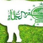 Pendataan Hewan Qurban Kota Blitar 2019